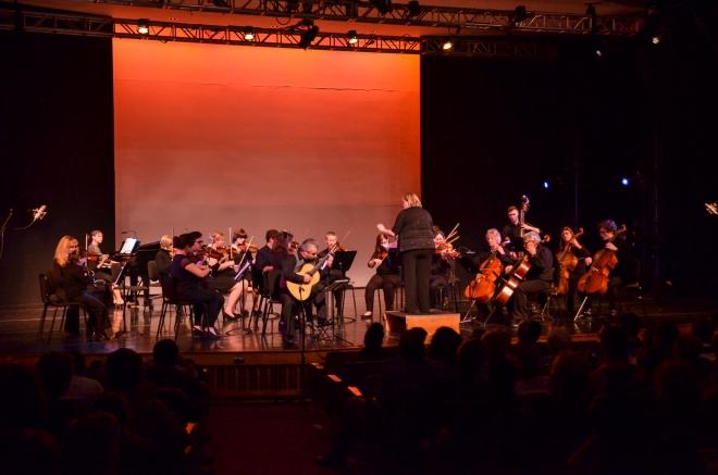 Chamber String Ensemble. Photo by Matt Carlin